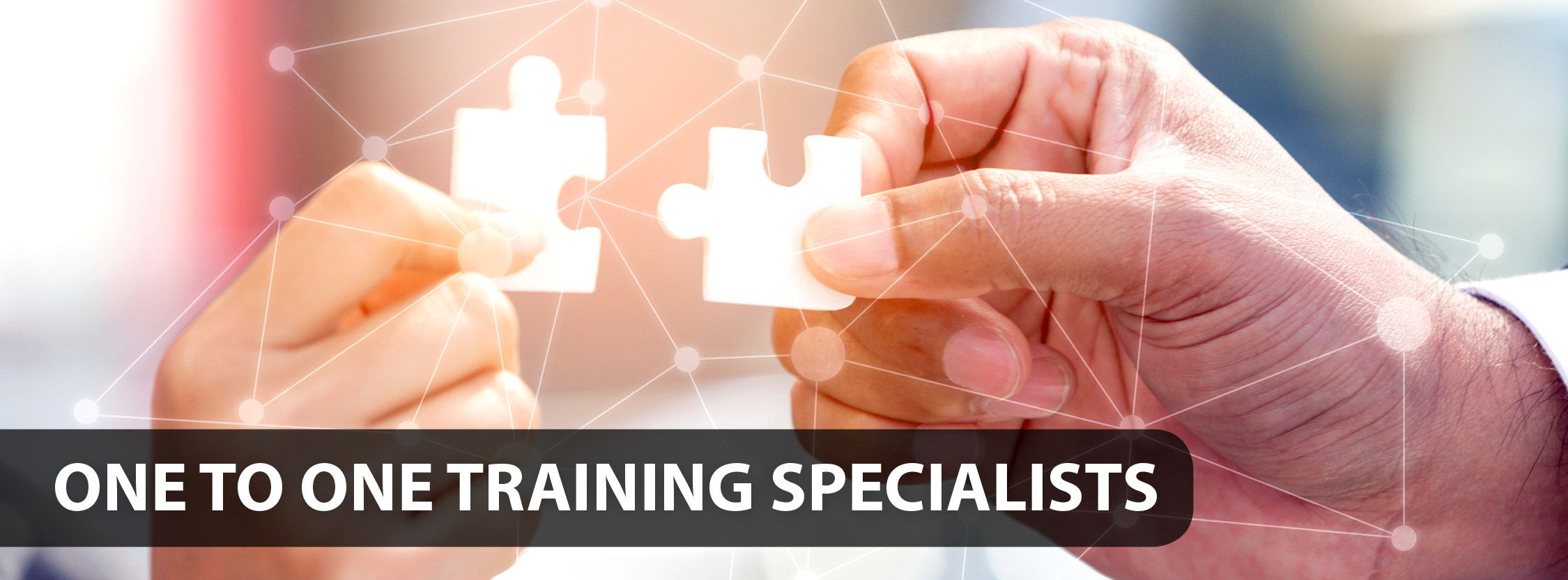One to one training specialists